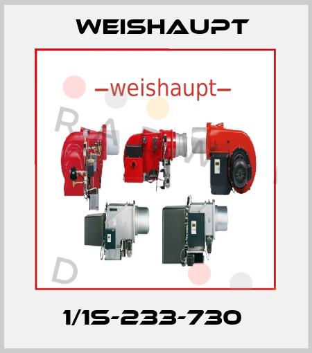 Weishaupt-1/1S-233-730  price
