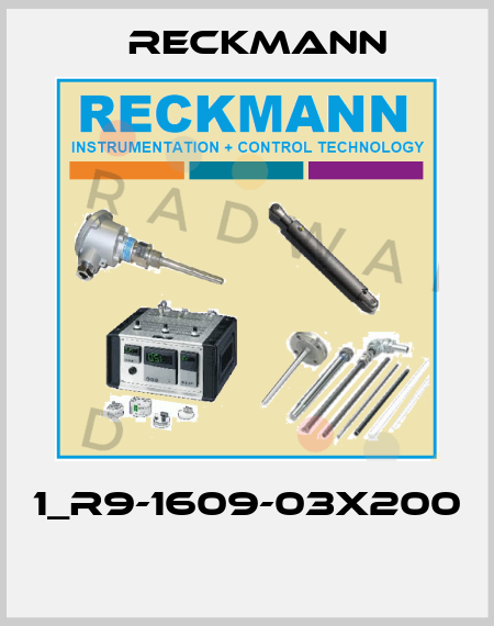 Reckmann-1_R9-1609-03X200  price