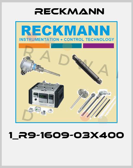 Reckmann-1_R9-1609-03X400  price