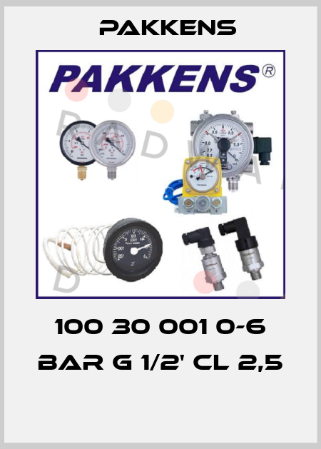 Pakkens-100 30 001 0-6 BAR G 1/2' CL 2,5  price