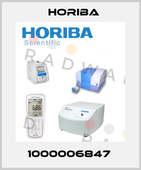 Horiba-1000006847  price