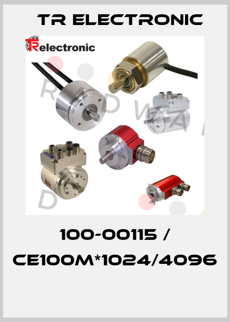 TR Electronic-100-00115 / CE100M*1024/4096  price