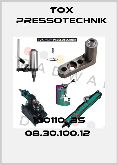 Tox Pressotechnik-100110, BS 08.30.100.12  price