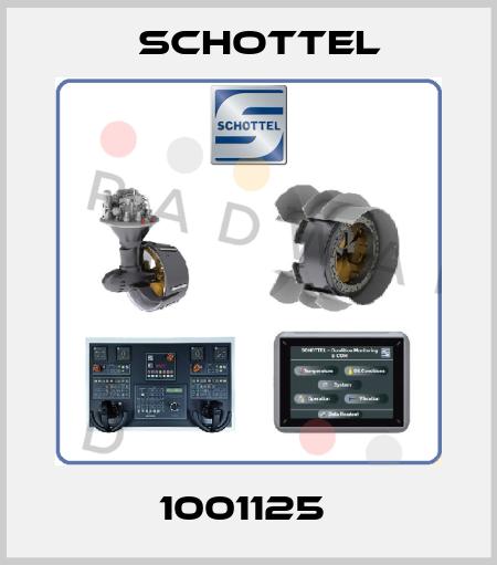 Schottel-1001125  price