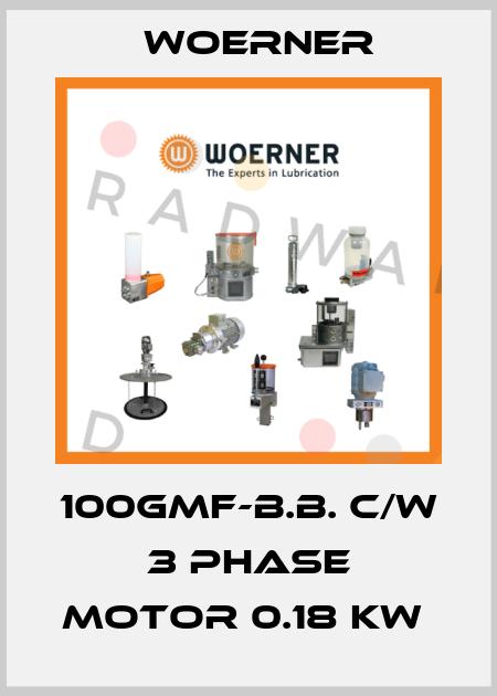 Woerner-100GMF-B.B. C/W 3 PHASE MOTOR 0.18 KW  price