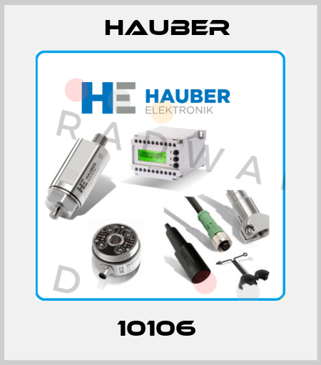 HAUBER-10106  price